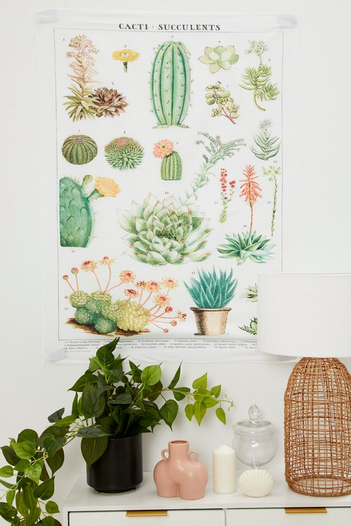 Cacti And Succulents Wall Tapestry 70cm By 100cm
